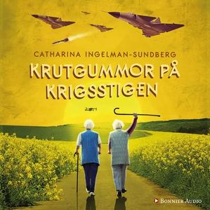 Krutgummor på krigsstigen (ljudbok) av Catharin