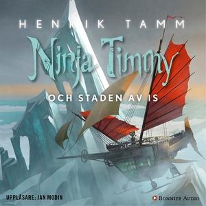 Ninja Timmy och staden av is (ljudbok) av Henri