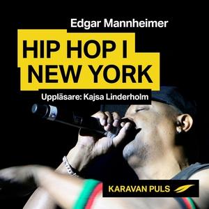 Hiphop i New York (ljudbok) av Edgar Mannheimer