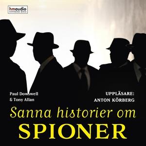 Sanna historier om spioner (ljudbok) av Paul Do