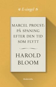 Marcel Proust: På spaning efter den tid som fly
