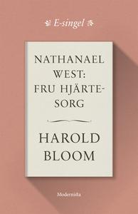 Nathanael West: Fru Hjärtesorg (e-bok) av Harol