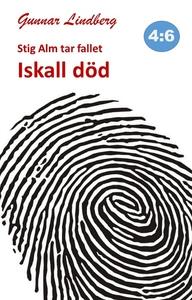 Stig Alm tar fallet - Iskall död (e-bok) av Gun