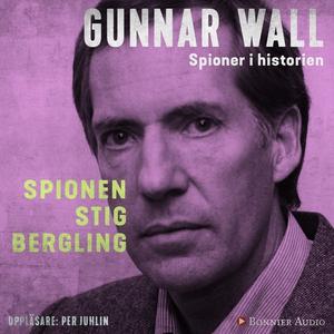 Spionen Stig Bergling (ljudbok) av Gunnar Wall