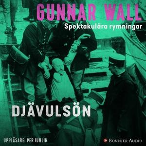 Djävulsön (ljudbok) av Gunnar Wall