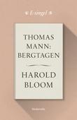 Thomas Mann: Bergtagen