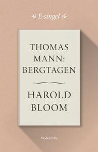 Thomas Mann: Bergtagen (e-bok) av Harold Bloom