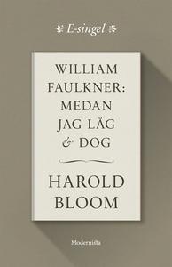 William Faulkner: Medan jag låg och dog (e-bok)