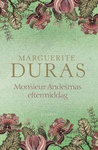 Monsieur Andesmas eftermiddag (e-bok) av Margue