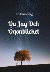 Du Jag Och Ögonblicket (e-bok) av Ted Grönberg