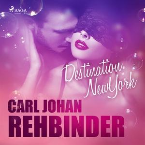Destination New York (ljudbok) av Carl Johan Re