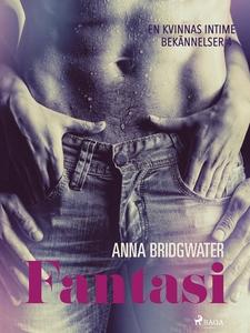 Fantasi - En kvinnas intima bekännelser 4 (e-bo