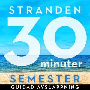 30 minuter semester- STRANDEN (ljudbok) av Ola