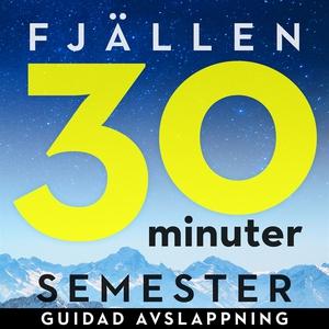 30 minuter semester- FJÄLLEN (ljudbok) av Ola R