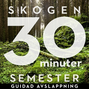 30 minuter semester- SKOGEN (ljudbok) av Ola Ri
