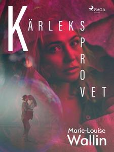 Kärleksprovet (e-bok) av Marie-Louise Wallin
