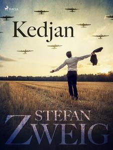 Kedjan (e-bok) av Stefan Zweig