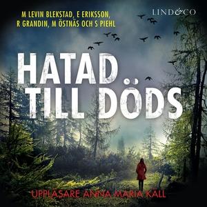 Hatad till döds (ljudbok) av Erik Eriksson, Mar