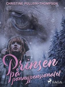 Prinsen på ponnypensionatet (e-bok) av Christin