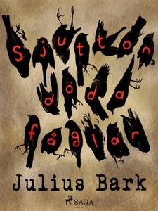 Sjutton döda fåglar (e-bok) av Julius Bark