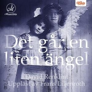 Det går en liten ängel (ljudbok) av David Renkl