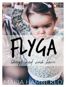 Flyga långt med små barn (e-bok) av Maria Hamne