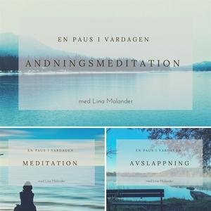 En paus i vardagen (ljudbok) av Lina Molander