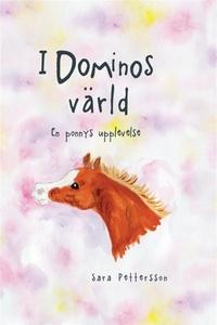 I Dominos värld (e-bok) av Sara Pettersson