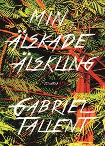 Min älskade älskling (e-bok) av Gabriel Tallent
