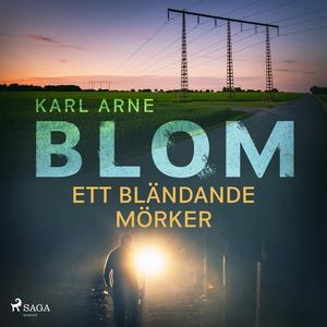 Ett bländande mörker (ljudbok) av Karl Arne Blo