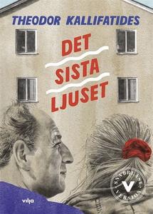 Det sista ljuset (lättläst) (e-bok) av Theodor