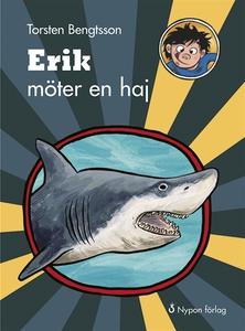 Erik möter en haj (e-bok) av Torsten Bengtsson