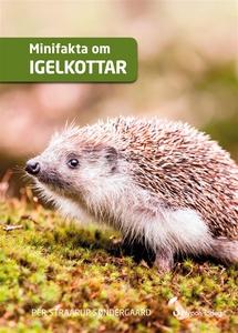 Minifakta om igelkottar (e-bok) av Per Straarup