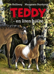 Teddy - en liten hjälte (e-bok) av Lin Hallberg