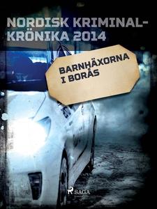 Barnhäxorna i Borås (e-bok) av Diverse författa