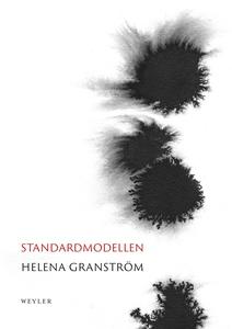 Standardmodellen (e-bok) av Helena Granström