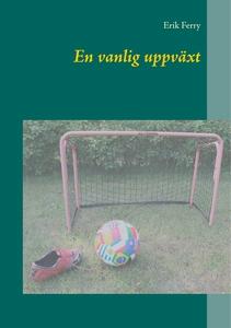 En vanlig uppväxt (e-bok) av Erik Ferry