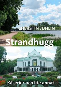 Strandhugg: Kåserier och lite annat (e-bok) av