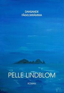 Dansande fågelskrämma (e-bok) av Pelle Lindblom
