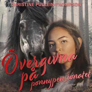 Övergivna på ponnypensionatet (ljudbok) av Chri