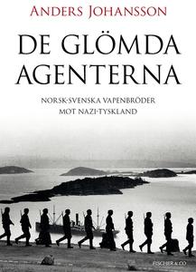 De glömda agenterna (e-bok) av Anders Johansson