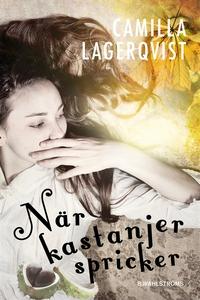 När kastanjer spricker (e-bok) av Camilla Lager