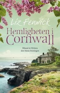 Hemligheten i Cornwall (e-bok) av Liz Fenwick