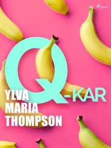 Q-kar (e-bok) av Ylva Maria Thompson