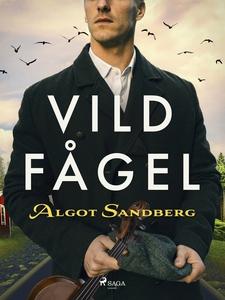 Vildfågel (e-bok) av Algot Sandberg