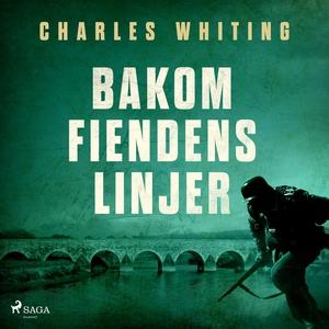 Bakom fiendens linjer (ljudbok) av Charles Whit