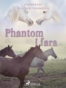 Phantom i fara (e-bok) av Christine Pullein-Tho