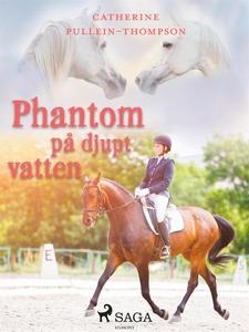 Phantom på djupt vatten (e-bok) av Christine Pu