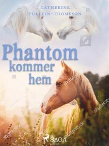 Phantom kommer hem (e-bok) av Christine Pullein