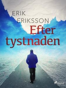 Efter tystnaden (e-bok) av Erik Eriksson